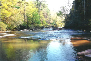 Over 2 miles along the Tallulah River, with great trout fishing!