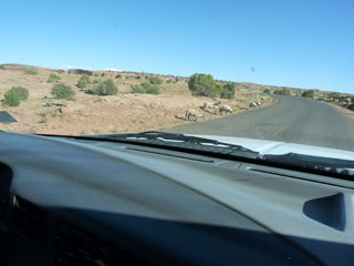 Sheep along the road at Canyon de Chelly