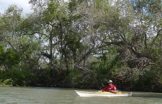 Ken Johnson Kayak Tours