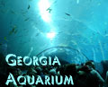Georgia Aquarium feature now posted on Southpoint.com